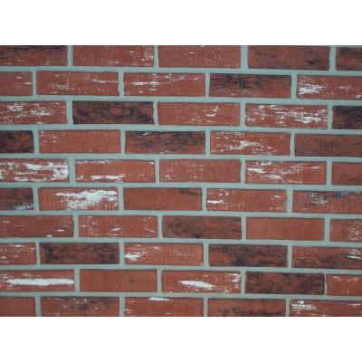 Z-Brick Inca 2-1/4 In. x 8 In. Facing Brick